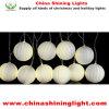 クリスマスの休日のパーティの装飾LEDの休日ライト