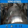 Изготовление Китая гальванизировало стальной материал катушки SGCC