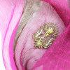Mantón impreso de seda modificado para requisitos particulares del 100% con el bordado metalizado de la cuerda de rosca (AMA170609-1)