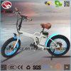 bicyclette se pliante électrique du mini vélo 250W pliable à vendre