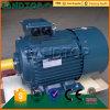 Moteur de ventilateur électrique triphasé à C.A. de prix bas