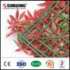 [سونوينغ] رخيصة [بفك-كتد] أحمر تمويه اصطناعيّة ورقة سياج وسياج عمليّة بيع
