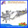 Máquina de transformação dos produtos agrícolas máquina de corte de frutas e produtos hortícolas