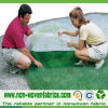 Agriculture Weed ControlのためのNonwoven Fabric