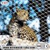 Acoplamiento reciclable y durable del recinto del parque zoológico del acero inoxidable