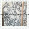Lastra di marmo bianca di Arabescato per il controsoffitto della cucina