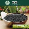 Il carbonio di Kingeta ha basato il fertilizzante composto NPK 22-7-11 per l'erba