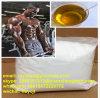 기름 시험 Enanject 스테로이드 600 테스토스테론 Enanthate 600mg/Ml CAS 315-37-7