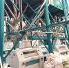 40-60ton blé et le maïs Milling Machine