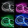 Indicatore luminoso al neon chiaro al neon della corda della Cina LED LED