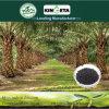 Schwarzes granuliertes organisches Düngemittel-Aussehen 2mm