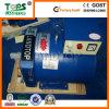Alternatore a tre fasi della STC 20kw 400V di migliori prezzi