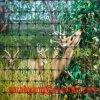 PPのプラスチック網のシカの網の庭のネット