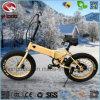 Складчатости автошины E-Самоката En15194 батарея лития велосипеда тучной миниой электрическая