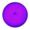 100% wasserdichter Zügel gefüllte LED Swimmingpool-Lichter