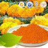 Natürliches Pigment-Nahrungsmittelfarbton-Pflanzenauszug-Lutein-Puder