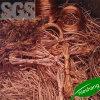 SGS 99,9% 99,99% del desecho de alambre de cobre chatarra de cobre
