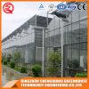 Estufa 2017 de vidro de China com sistema refrigerando
