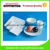 白い陶磁器のディッシュウォッシャーのマイクロウェーブ安全なディナー・ウェアセット