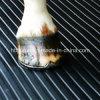 Absorption des chocs Horse tapis caoutchouc pour l'étage