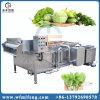 쉬운 운영 식물성 과일 청소 기계