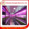 10W LEDのアクアリウムのプラントか花または魚または野菜は管ライトを育てる