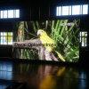 Exhibición de LED publicitaria flexible a todo color al aire libre adicional de SMD P6 poste ligero