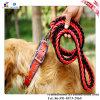 Colar de nylon da trela do cão da corda da alta qualidade para o treinamento ao ar livre