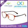 Optisch Tr90 Frame Eyewear Nieuwe Eyewear