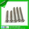 HoofdRoestvrij staal 304 van de Ster van de Levering van China M6 Speciaal de Schroef van de Machine