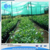 HDPE de Plastic Netto Schaduw van uitstekende kwaliteit van de Zon van de Landbouw Groene