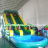 Grade commerciale Tropical Water Slide con Pool (CYSL-559)