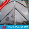 Fornitore di nastro trasportatore di estrazione mineraria PVC/Pvg