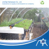 Pp Nonwoven Fabric pour Greenhouse