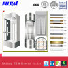 1000kg de capacidade do elevador de observação com a ISO