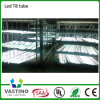 De la fábrica alta Effeciency LED luz directa del tubo de la venta el 120cm 18W