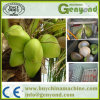 Macchina elaborante dell'acqua automatica piena della noce di cocco