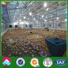 Collecte automatique de l'équipement de structure en acier de poulets de chair chambre