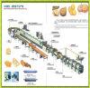 Горячие продажи автоматическая печенье производственной линии