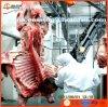 Het Slachthuis van het slachthuis voor de Lijn van de Slachting van de Koe Halal