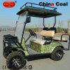 2+2의 시트 전기 가스에 의하여 강화되는 골프 Buggy 관광 차
