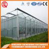 Multi Überspannung galvanisiertes Stahlrahmen PC Blatt-Gewächshaus für Gemüse