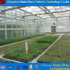 Professional Cheapest Knell Insulated Tempered Greenhouse Knell