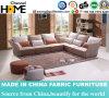 جديدة حديثة كوريّة تصميم بناء أريكة مع ركن ([هك572])