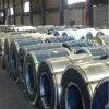 Vorgestrichener galvanisierter Stahl Coil-04