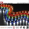 UL Ce 30 LED SMD 5050/M DE TIRA DE LEDS flexible