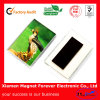 Schöner heißer Verkaufs-Acrylkühlraum-Magnet-Foto-Rahmen