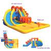 Inflatable variopinto Slide con un Big Pool (MIC-865)