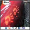 Thermochromic自動車ペンキの顔料の粉