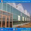 専門のプロジェクトの熱の保存の庭の販売法によって使用される温室